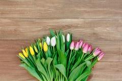 Wiosna kwitnie na desce Fotografia Stock