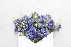 Wiosna kwitnie w kopercie na nieociosanym tle Zdjęcie Royalty Free