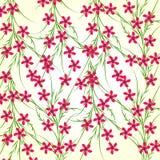 Wiosna Kwitnie Wektorową ilustrację Obraz Royalty Free