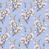 Wiosna, kwitnie wierzby, akwarela Zdjęcie Stock