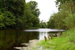 wiosna lake Fotografia Stock