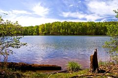 wiosna lake Fotografia Royalty Free