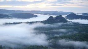 Wiosna mglisty ranek w lasu krajobrazie Majestatyczni szczyty ciąca oświetlenie mgły dolina Głęboko foluje kolorowa mgła i wzgórz zdjęcie wideo