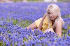 Wiosna ogród Obraz Stock