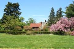 wiosna ogrodowa Zdjęcia Stock