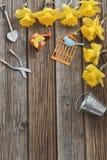wiosna ogrodowe pracy Fotografia Stock