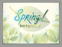 Wiosna opuszcza horyzontalnego tło, natura sezonowy szablon fo royalty ilustracja