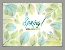 Wiosna opuszcza horyzontalnego tło, natura sezonowy szablon fo ilustracji