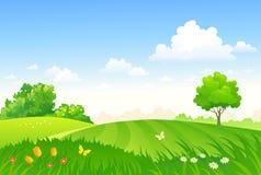Wiosna paśnik, zieleni pola krajobraz ilustracja wektor