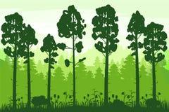 Wiosna piękny krajobraz, las, sylwetki drzewni bagażniki, zielony kolor ulistnienie Panorama, horyzont, natura ilustracja wektor