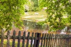Wiosna pogodny park Zdjęcia Royalty Free