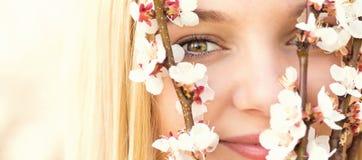 Wiosna portret kobieta wśród kwiecenie gałąź Fotografia Royalty Free