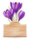 Wiosna projekt Zdjęcia Royalty Free