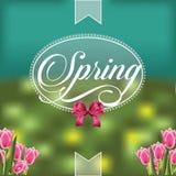 Wiosna projekt z półprzezroczystą odznaką i tulipanami Zdjęcia Stock