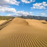 Wiosna przy Wielkimi piasek diunami - kwadrat fotografia royalty free