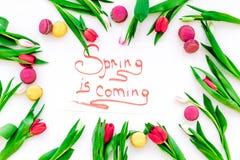 Wiosna przychodzi ręki literowanie otaczającego czerwonymi tulipanów i cukierków macarons na białego tła odgórnym widoku Obrazy Stock
