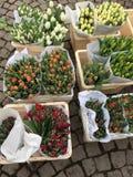 Wiosna przychodzi - tulipany od above Zdjęcia Royalty Free