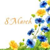 Wiosna remisu kwiaty dla eighth Marzec Zdjęcie Stock