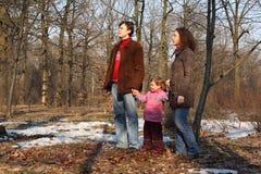 wiosna rodzinny drewno obraz stock