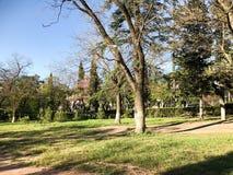 Wiosna słoneczny dzień w miasto parku w Tbilisi, Gruzja obrazy royalty free