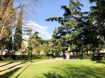 Wiosna słoneczny dzień w miasto parku w Tbilisi, Gruzja fotografia royalty free