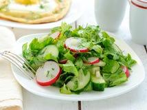 wiosna sałatkowi warzywa Obraz Stock