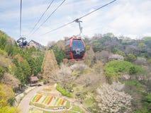 Wiosna sezon przy Nunobiki zielarskiego ogródu Kobe ropeway Fotografia Stock