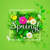 Wiosna skład z kwiatonośnymi chamomiles, żółtymi dandelions, dziką różą i zieleń liśćmi, royalty ilustracja
