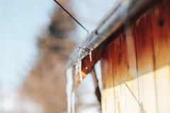 Wiosna sopel topi w świetle słonecznym Piękny sopla glint zdjęcie royalty free