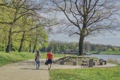 Wiosna spacer para z psem zdjęcie royalty free