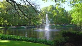 Wiosna staw w parku zbiory