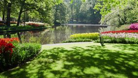 Wiosna staw w parku zbiory wideo