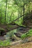 Wiosna strumień z odbiciem Fotografia Royalty Free