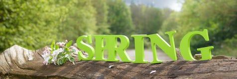 Wiosna sztandar Zdjęcia Royalty Free