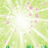 wiosna tło ilustracja wektor