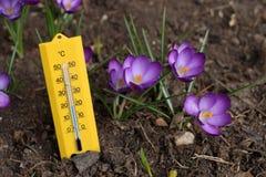 wiosna temperatury Zdjęcia Royalty Free