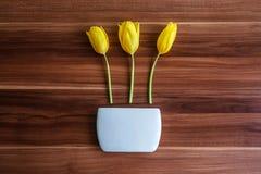 Wiosna tulipany Obrazy Stock