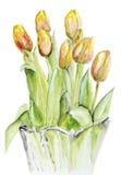Wiosna tulipany w krystalicznej wazie royalty ilustracja