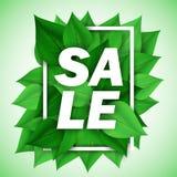 Wiosna typograficzna zielony liść Royalty Ilustracja
