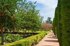 Wiosna uprawia ogródek przy Alcazar, cordoba, Hiszpania Fotografia Stock