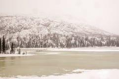 Wiosna w Alaska pustkowiu Obraz Royalty Free