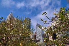 Wiosna w Chicago Zdjęcia Stock