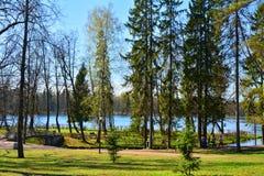 Wiosna w Gatchina petersburg Rosji st Zdjęcia Royalty Free