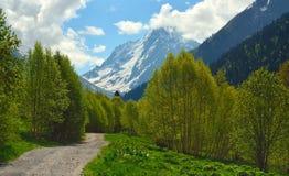 Wiosna w Kaukaz Fotografia Stock