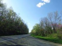 Wiosna w Kentucky zdjęcie royalty free