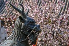 Wiosna w lato pałac Obrazy Stock