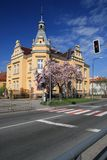 Wiosna w miasteczku Obraz Royalty Free