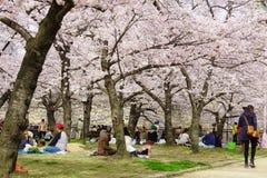 Wiosna w Osaka Fotografia Stock