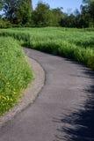 Wiosna w parku Zdjęcia Stock