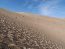 Wiosna w pustyni obraz stock